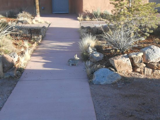 Ojo Caliente Mineral Springs Resort and Spa : a visitor