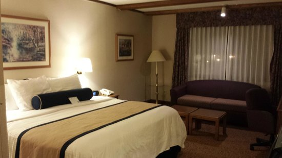 Midway Hotel & Suites Brookfield: the room