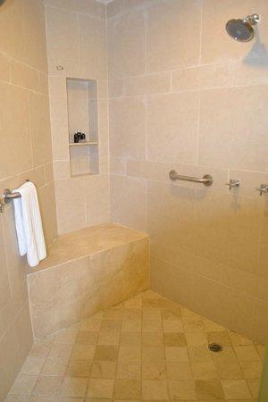 Hard Rock Hotel & Casino Punta Cana: Shower