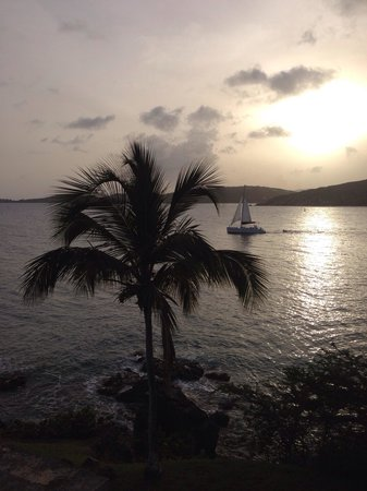 Marriott's Frenchman's Cove: View from hotel Charlotte Amalie bay