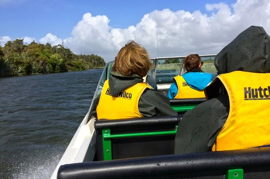 White Heron Sanctuary Tours: jet boat to the blind