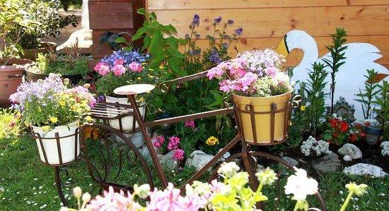 Camping la Renouillère : Vélo fleuri