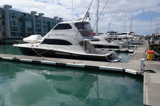 Sofitel Auckland Viaduct Harbour: Million dollar yachets to drool over