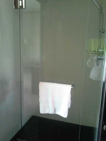 Sofitel Auckland Viaduct Harbour: large shower includes a rainfall shower head
