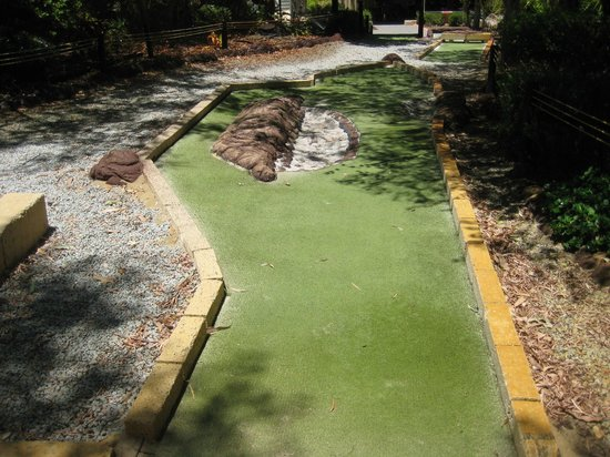 ‪Caladenia Mini Golf‬