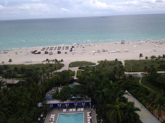Shore Club South Beach Hotel : Vista do apartamento