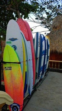 Jaco Laguna Resort & Beach Club: Surf