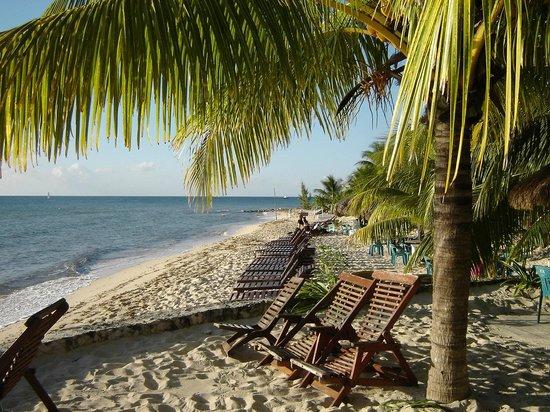View of Playa Palancar