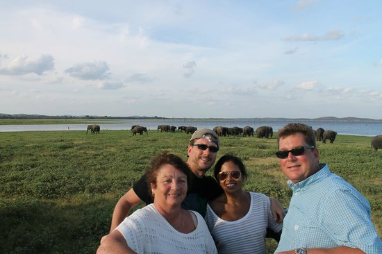 Mount Lavinia Hotel: Us fools checking out elephants