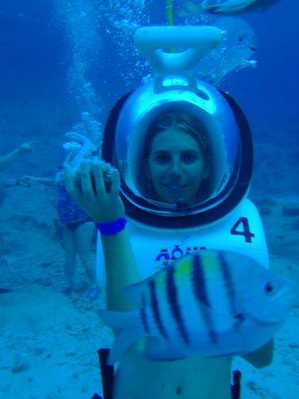 Aquanautas : con un erizo!!