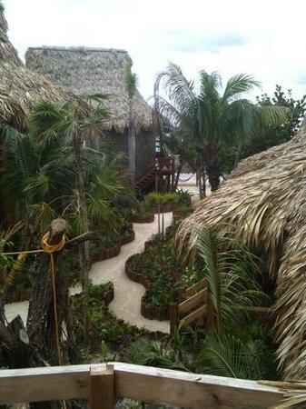 Ramon's Village Resort : garden view