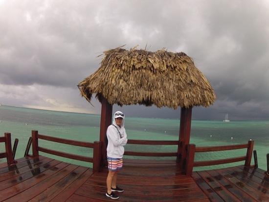 Ramon's Village Resort : Ocean View