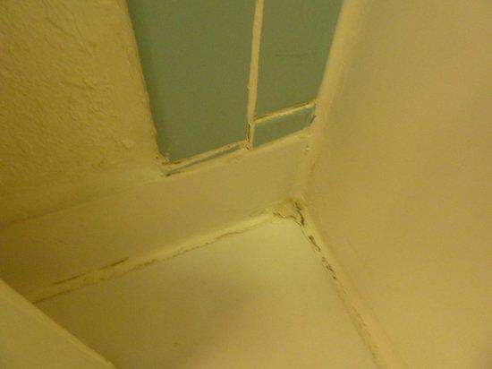 Ramada Fort Lauderdale Airport/Cruise Port : bathroom floor