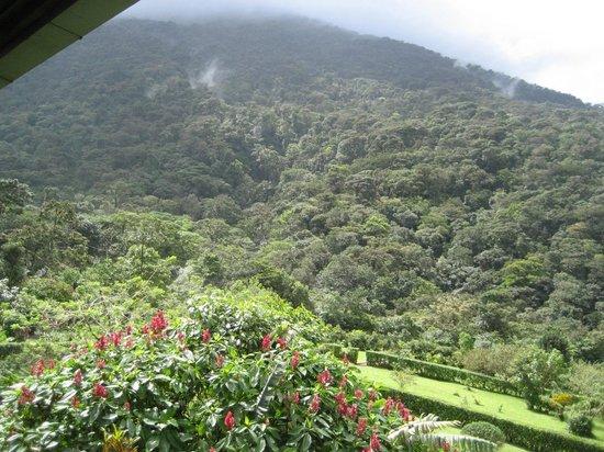 Celeste Mountain Lodge: Views!