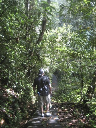 Celeste Mountain Lodge: Trail at Lodge