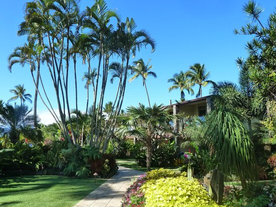 The Mauian Hotel on Napili Beach: The grounds