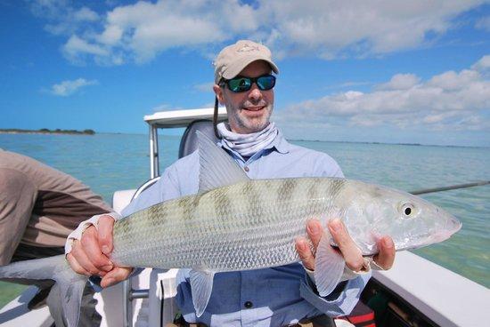 Swain's Cay Lodge: Bonefish!