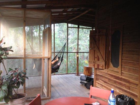 Belize Zoo Jungle Lodge/Tropical Education Center: porch area