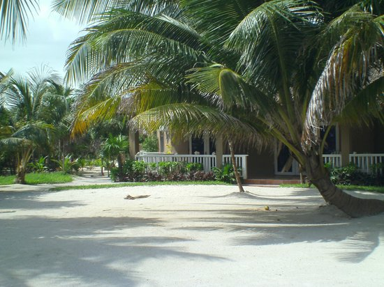 Sapphire Beach Resort: just a snap of the grounds-no pastel pink, or yellow! AWESOME!