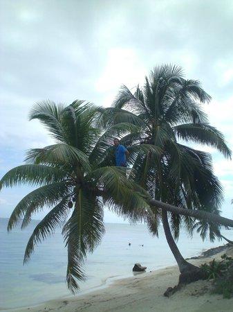 Sapphire Beach Resort: Jump!