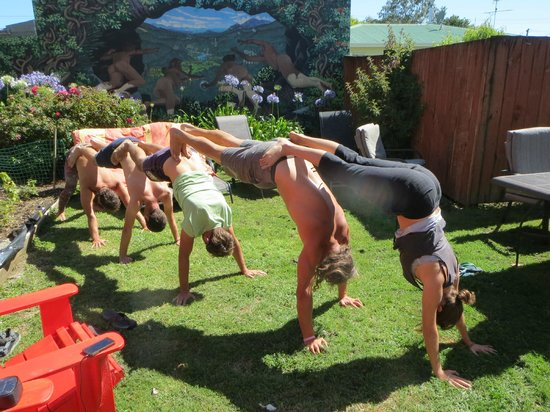 Gazebo Golden Bay Backpackers: Group Yoga in the Back Yard