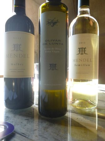 Trout & Wine Tours: Mendel Winery