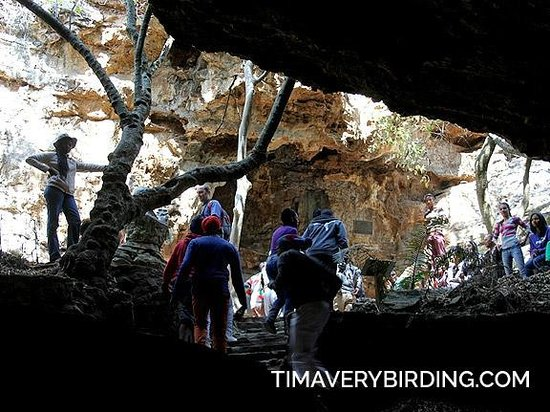 Sterkfontein Cave: Coming out of the caves.