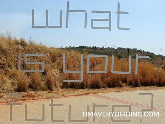 Maropeng Visitor Centre : What is your future?