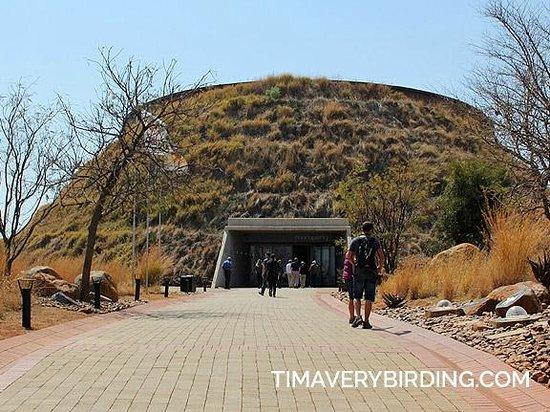 Maropeng Visitor Centre : Maropeng