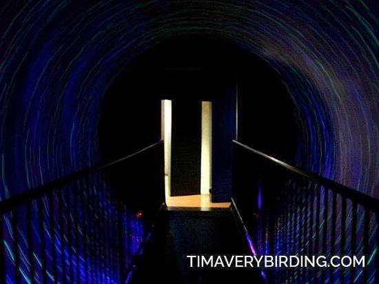 Maropeng Visitor Centre : Spinning Walkway
