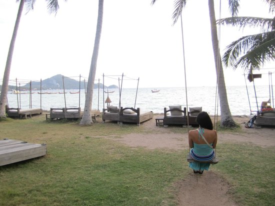 Koh Tao Cabana : The beach