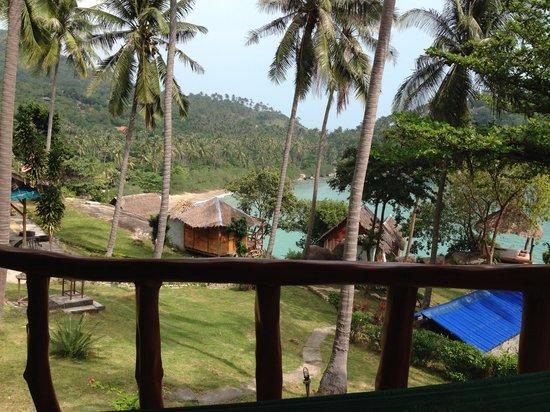 Horizon Muay Thai Boxing Camp: View from the hammock