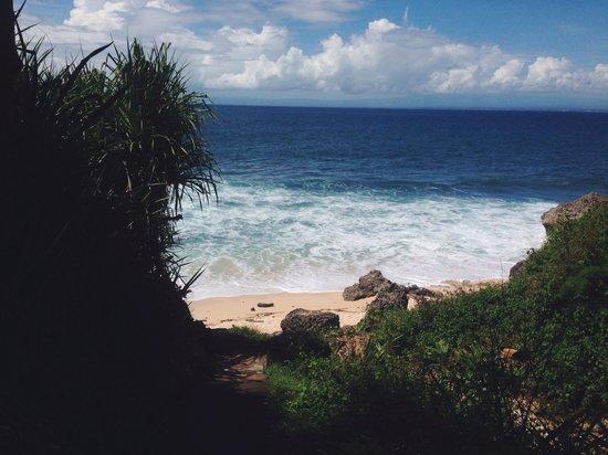 Beach at Milo's Home