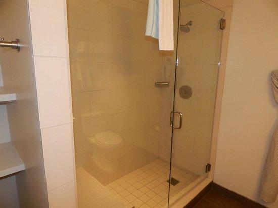 Hotel Parq Central : Shower