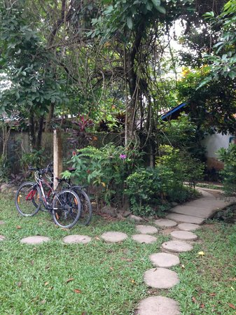 Maylyn Guest House: Lovely gardens