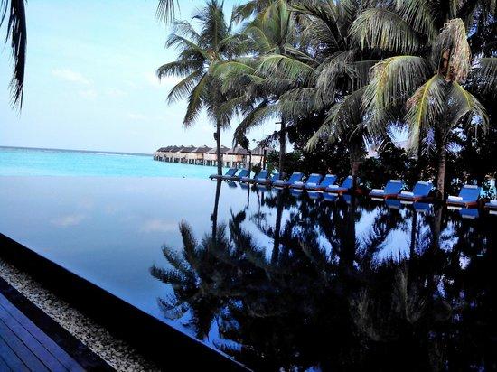 The Sun Siyam Iru Fushi Maldives: The infinity pool