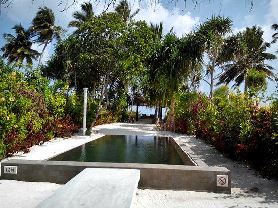 The Sun Siyam Iru Fushi Maldives : Private pool