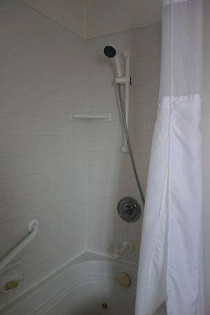 Svendsgaard's Inn: Shower