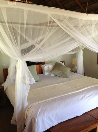 Rio Azul Lodge: Luxury villa