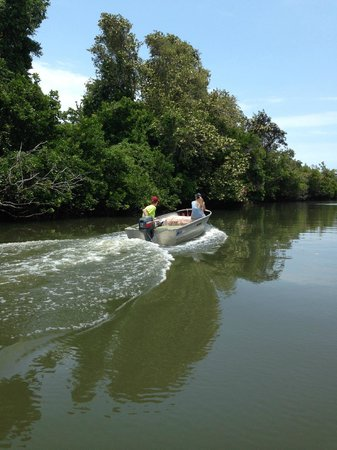 Rio Azul Lodge: Taking the tinny out