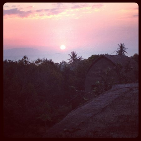 Tree Top Bungalows: View from restaurant at sunset.