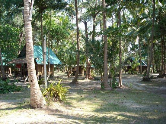 KP Huts: Huts surroundings
