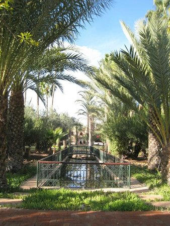 Dar Ayniwen Villa Hotel: Hotel Garden