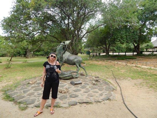 Skukuza Rest Camp: всем советую там побывать