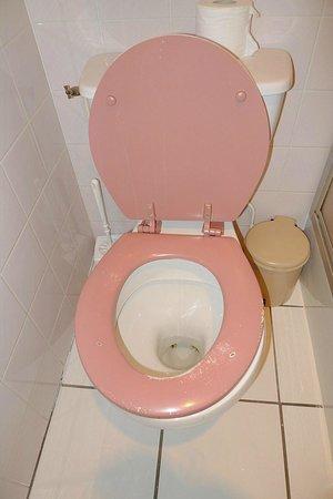 Logis Ardiden : Detalle baño
