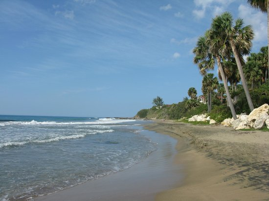 """""""Nuestra Casa"""" Guesthouse: the beach"""