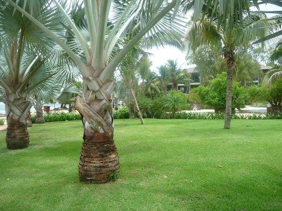 InterContinental Mauritius Resort Balaclava Fort: *