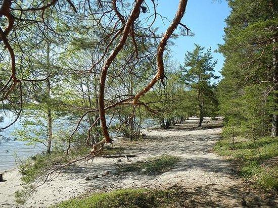 Kelvenne Island_Paijanne National Park