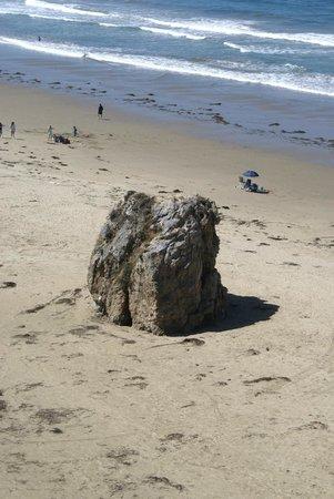 SeaCrest OceanFront Hotel : Blick auf den Strand