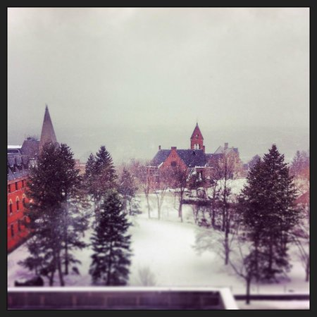 The Statler Hotel at Cornell University : View from the room